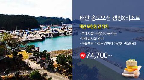 태안 송도오션 캠핑